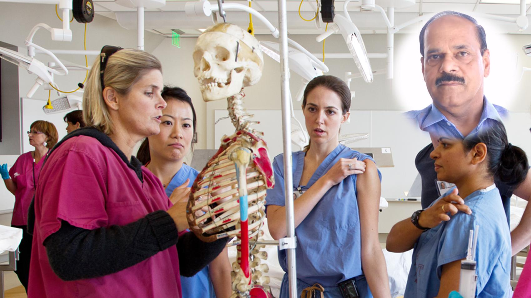 Career in Teaching Anatomy