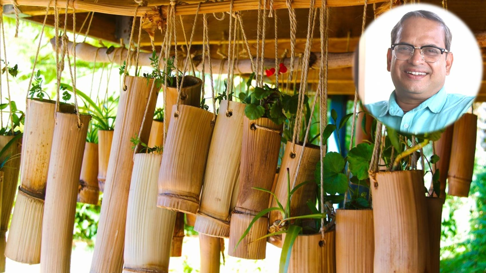Career in Bamboo Entrepreneurship